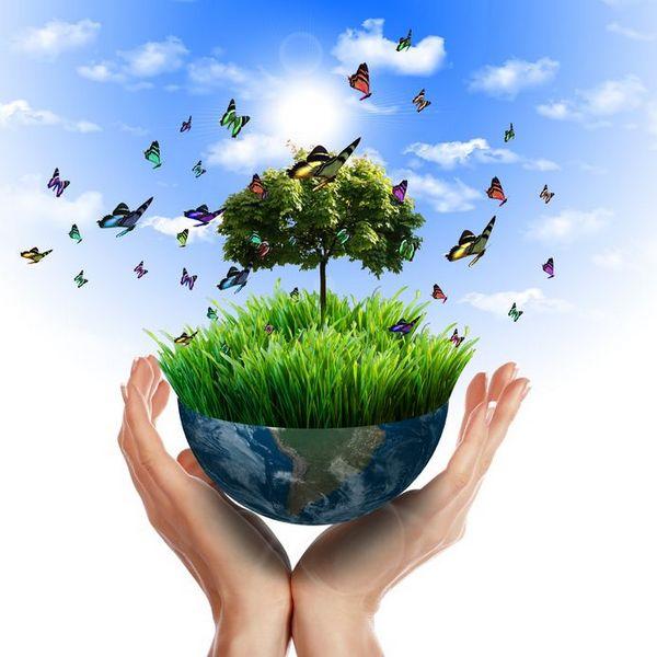 С днем окружающей среды картинки