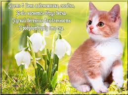 Открытки. 19 апреля День подснежника! Котенок у подснежника картинка смайлик