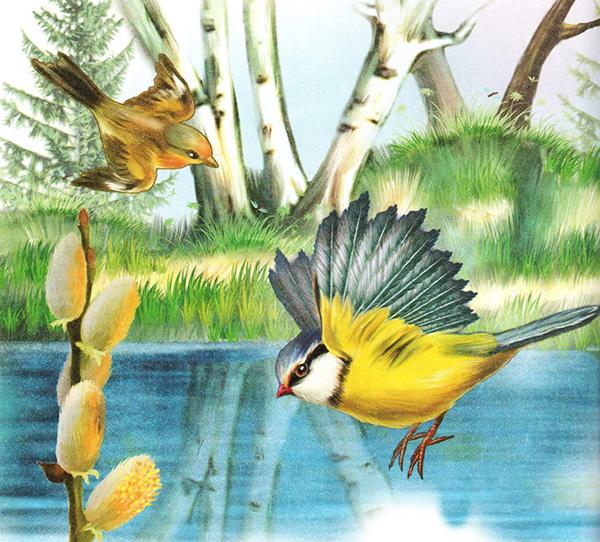 Картинки для детей весна птицы