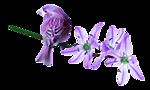 http://wdesk.ru/_ph/184/2/913511761.png?1495655630