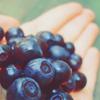 Фрукты, ягоды смайлик