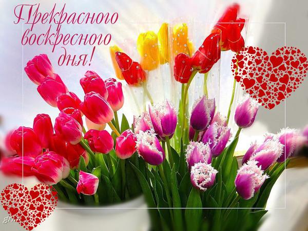натурального открытки удачного воскресного дня должен только снабдить